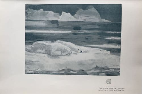 The Cold North, From the oil painting by John M. Swain, R.A. An original Lithograph print c1910