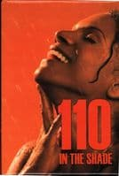 110 In The Shade Broadway Revival Fridge Magnet