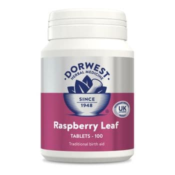 Dorwest - Raspberry Leaf Tablets For Dogs And Cats -100 Tablets