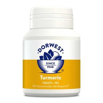 Dorwest - Turmeric Tablets - 100