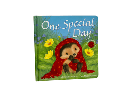 One Special Day Touch and Feel Book