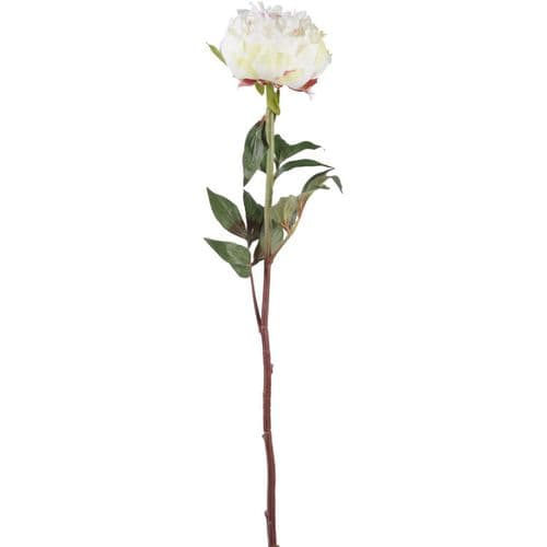 Faux White Peony Spray With Leaves 69cm