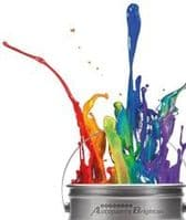 Basecoat Special Offers