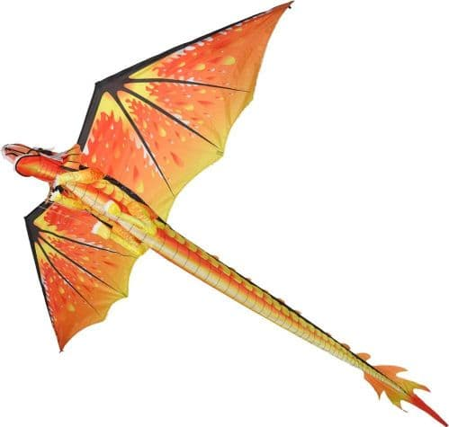 Classic 3D Dragon Kite/Windsock