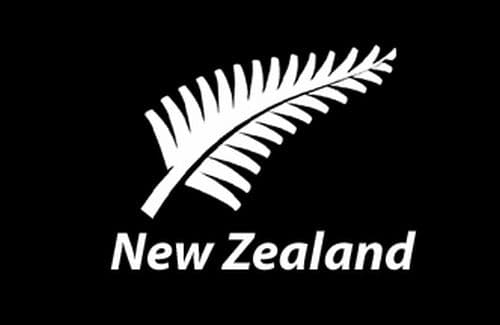 New Zealand Fern Flag