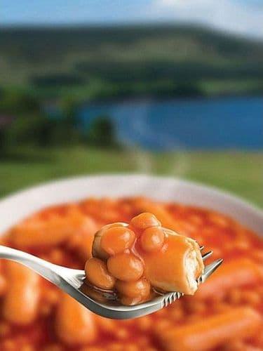 Wayfayrer Foods - Beans & Sausage