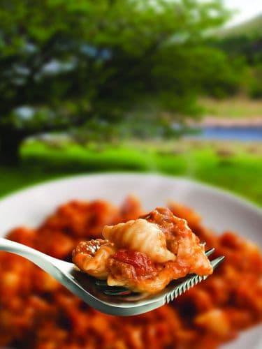 Wayfayrer Foods - Pasta Shells & Beef Bolognese