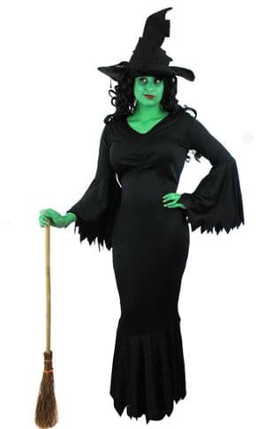 Wicked Witch Plus size Halloween Costume