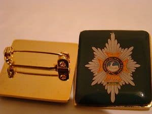 Worcestershire and Sherwood Foresters Regiment Resin Lapel Badge