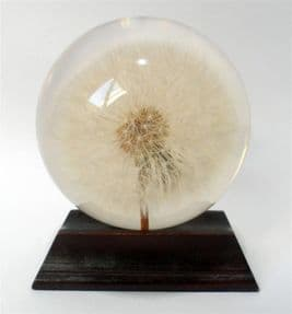 Post Vintage Large 1994 Hafod Grange Lucite Acrylic Resin Paperweight Dandelion Seed Head Clock