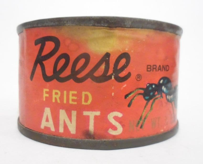Vintage Tin Reese Finer Foods Inc Fried Ants Made in Japan Circa 1950s Unopened Original Contents