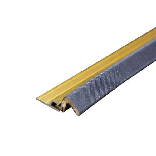 QLON Retro Seal (914mm long - Gold)