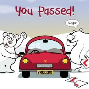 You Passed Driving Test